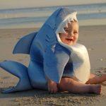 Рисунок профиля (Sharky)